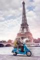Paris - Cooltra Shop