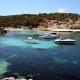 Mallorca delight