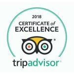 Nouvelle récompense pour Cooltra qui reçoit l'Attestation d'Excellence de TripAdvisor
