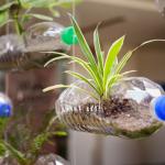 Construye un macetero flotante con botellas de plástico reciclado