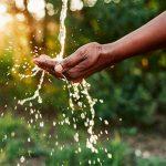 5 Consejos para ahorrar agua este verano